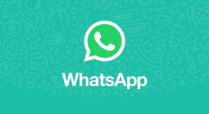 WhatsApp Testing Message Unsend Feature