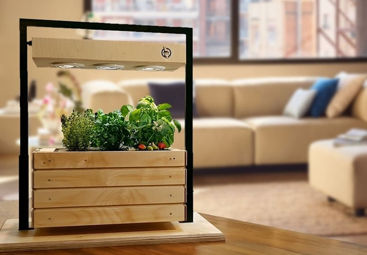 Gartenzwerg Wants to Put a Smart Garden in Your House | Newslibre