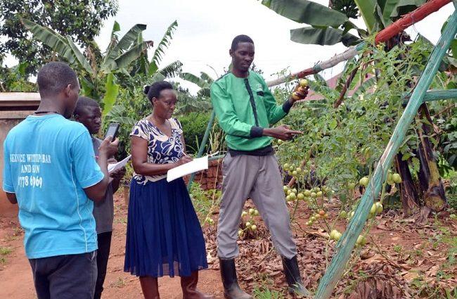 Mak Alumnus Transforming Lives Through Urban Farming and Micro gardening 1