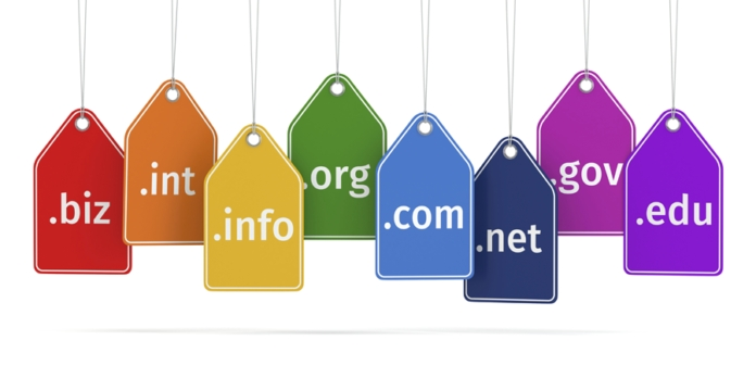 Domain names and types.