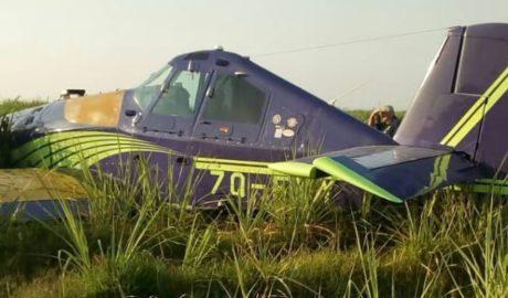 Small plane crash lands in Illovo sugarcane fields.