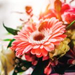 Must Know Trivia about Flower Bouquets and Arrangements - Newslibre