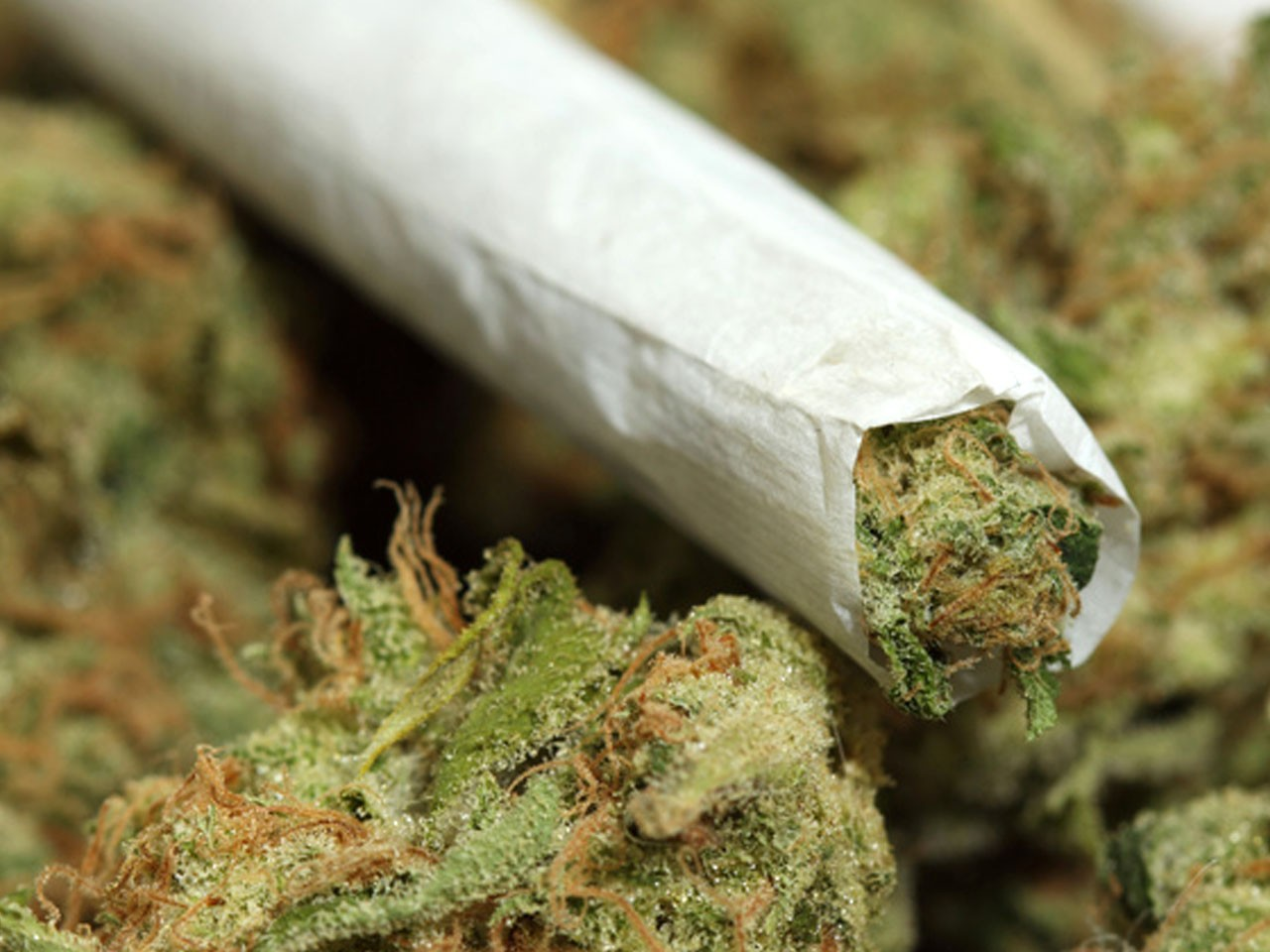 Marijuana Now Fully Legal in Zambia - Newslibre
