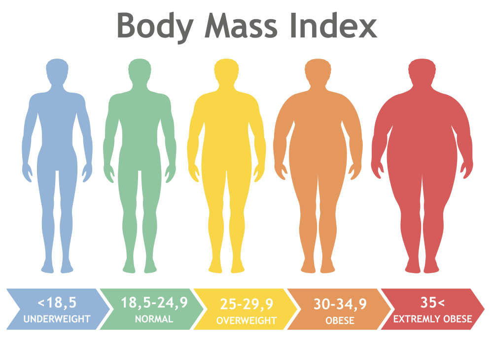 Obesity Is Killing More People Every Year and Here's Why - Newslibre