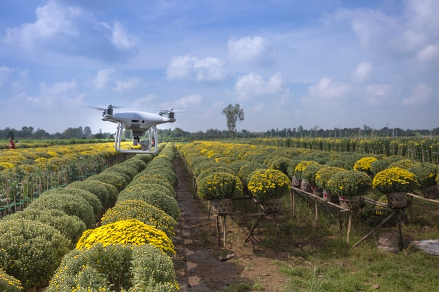 The Future of Agriculture: How are Robots Redefining Farming - Newslibre