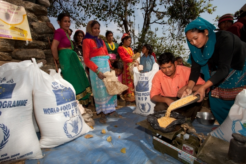 UN World Food Programme Wins Nobel Peace Prize- Newslibre